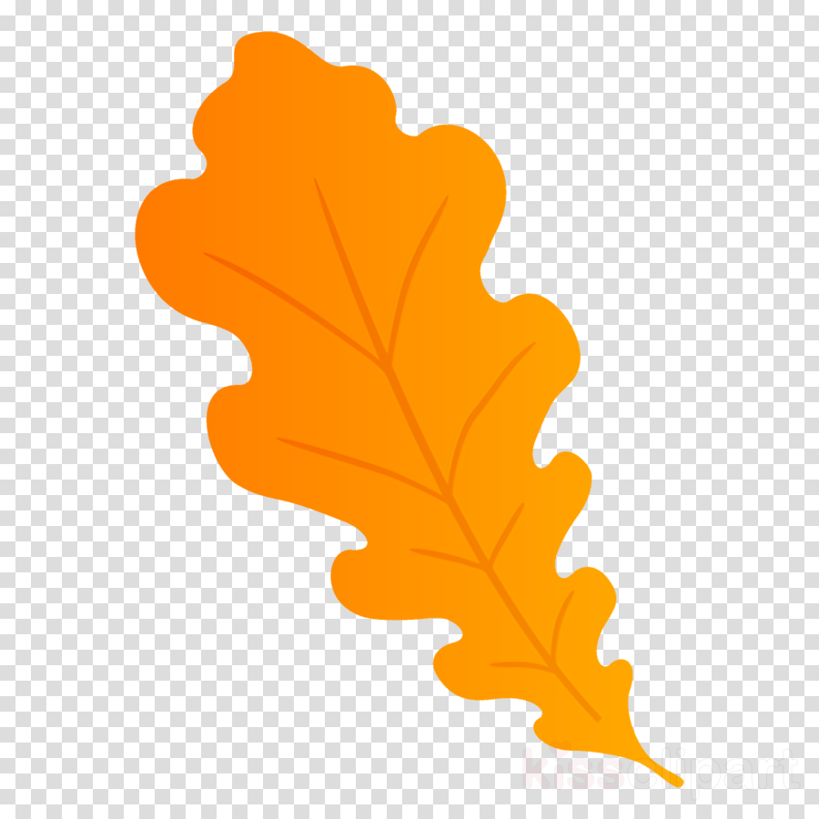 oak leaf autumn leaf fall leaf clipart.