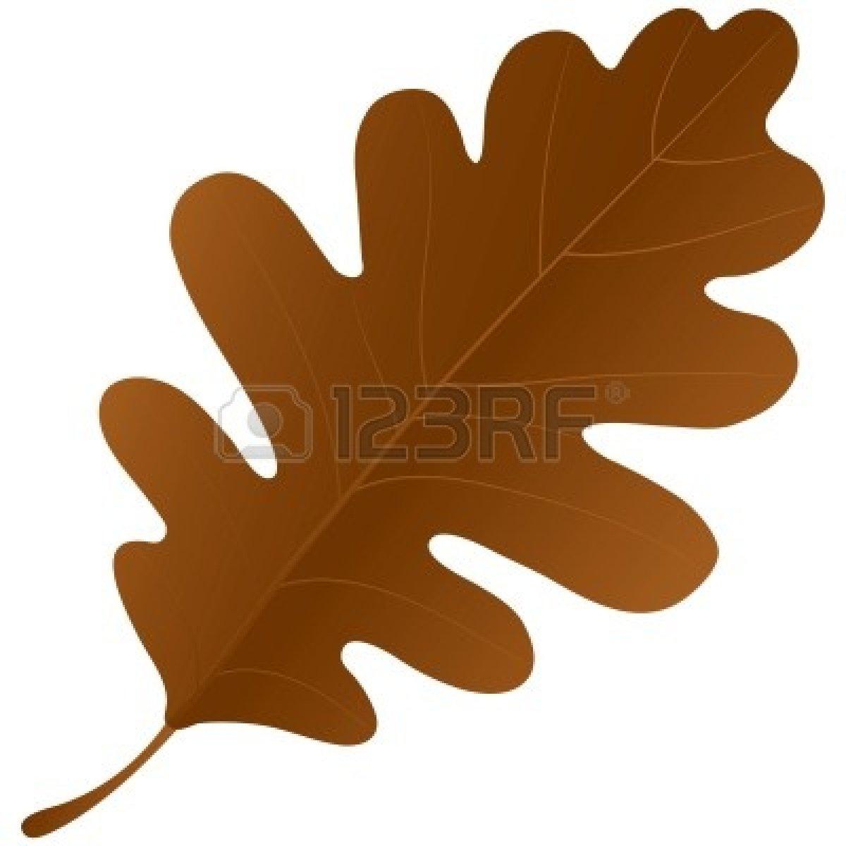 Autumn Oak Leaves Clipart.