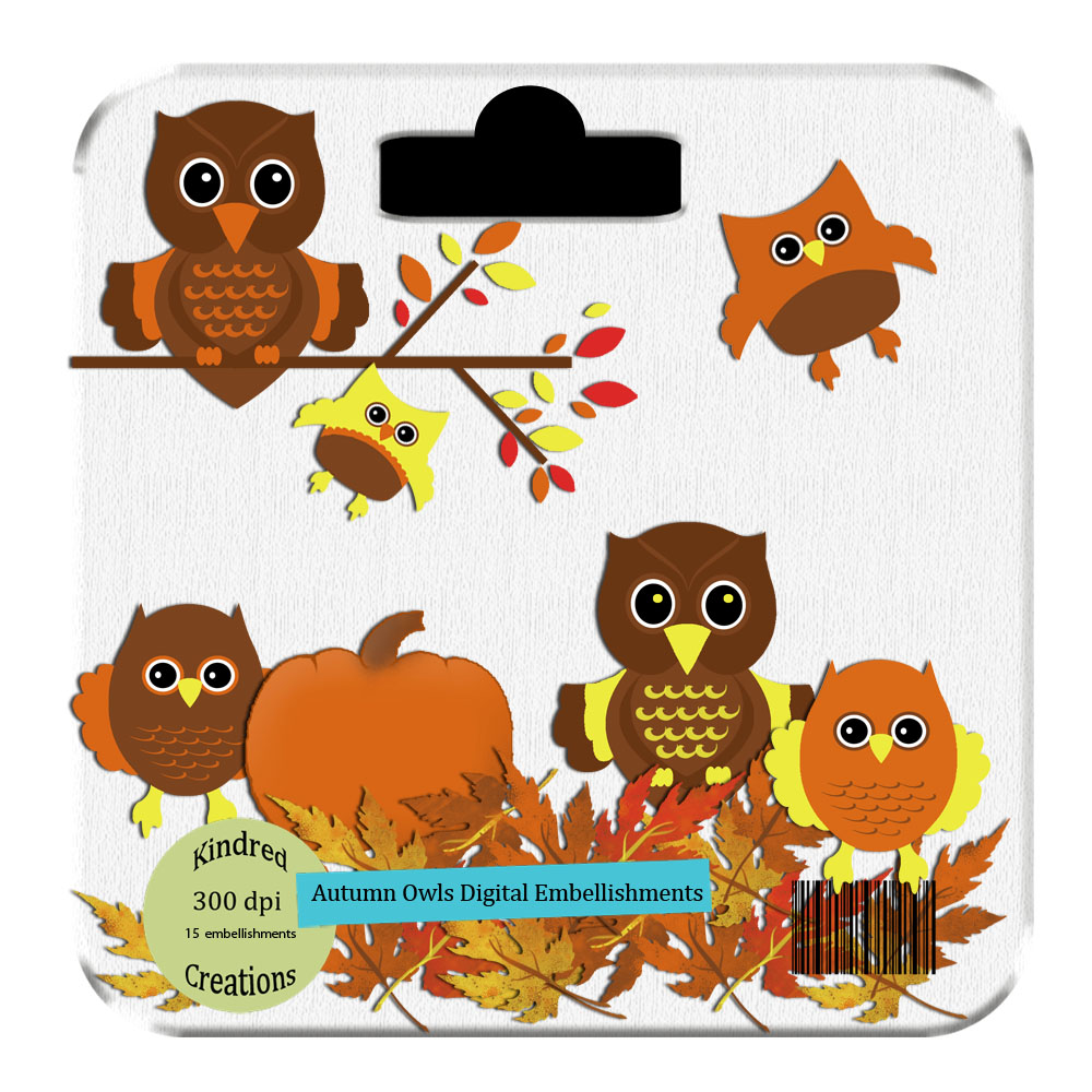 Autumn Owls Clipart Set.