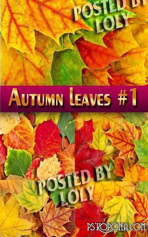 Autumn Forest (HQ clipart) » Photoshop.