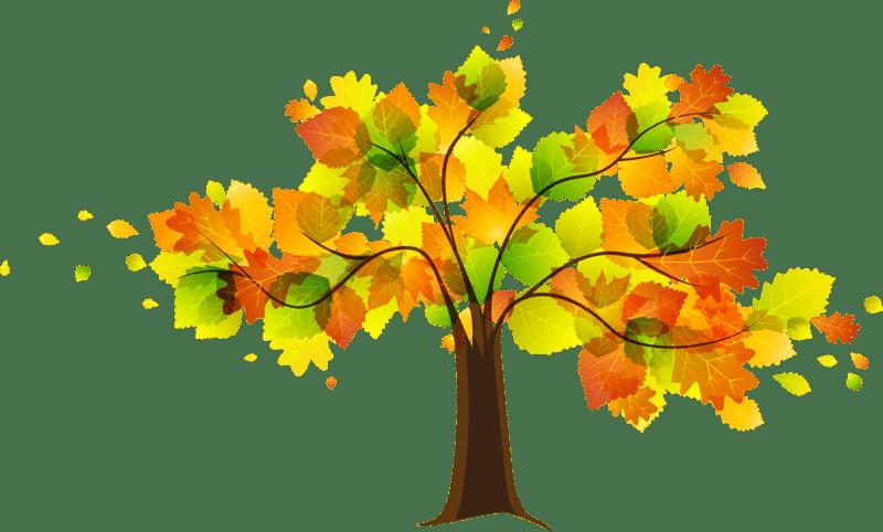 Fall clipart autumn tree, Fall autumn tree Transparent FREE.