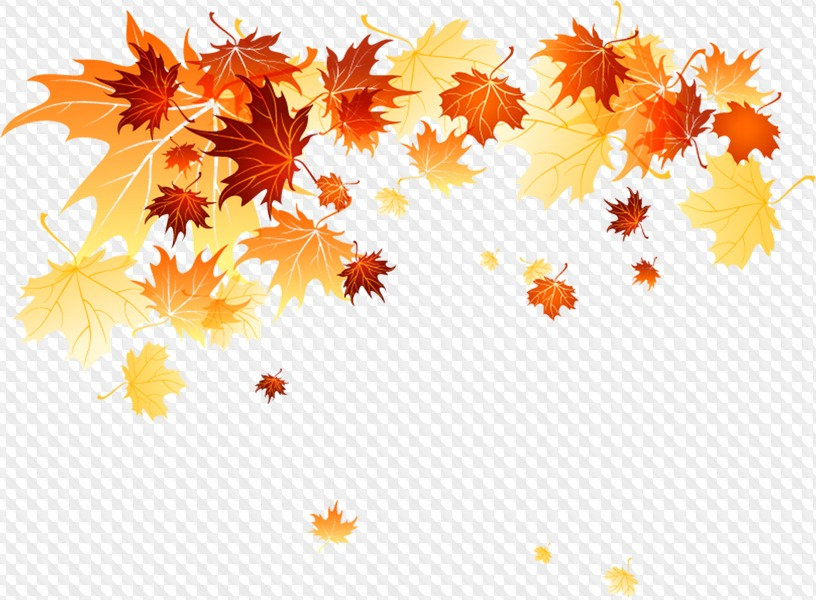 PSD, 13 PNG, Autumn leaves frames Clipart on transparent background.