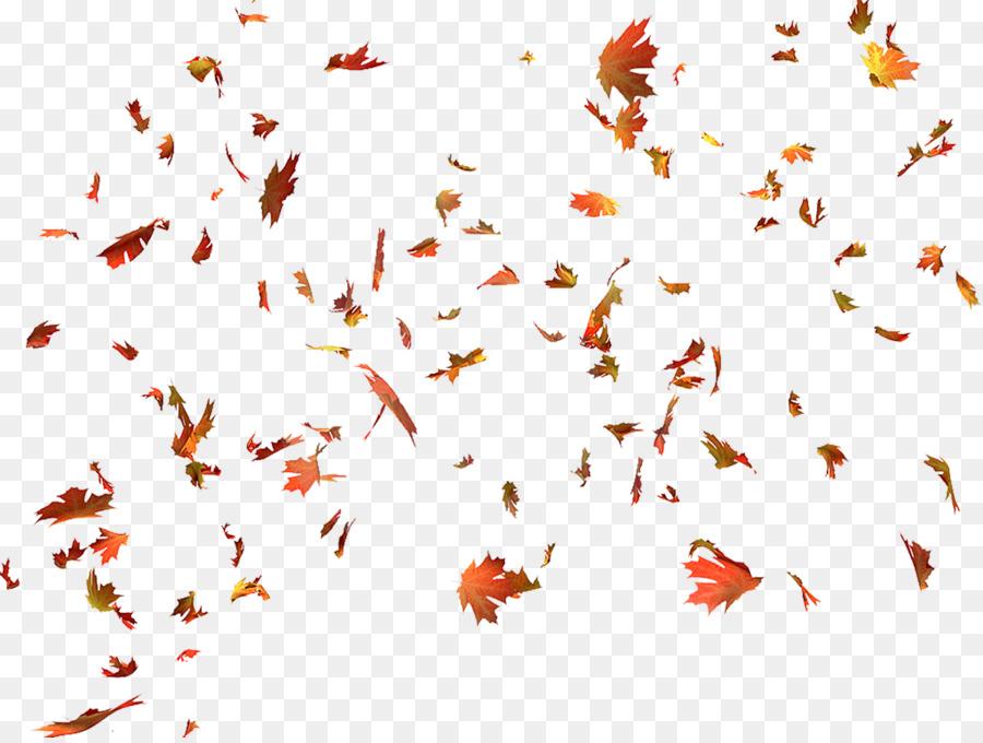 Autumn Leaf Color Autumn Leaf Color Mapl #47731.