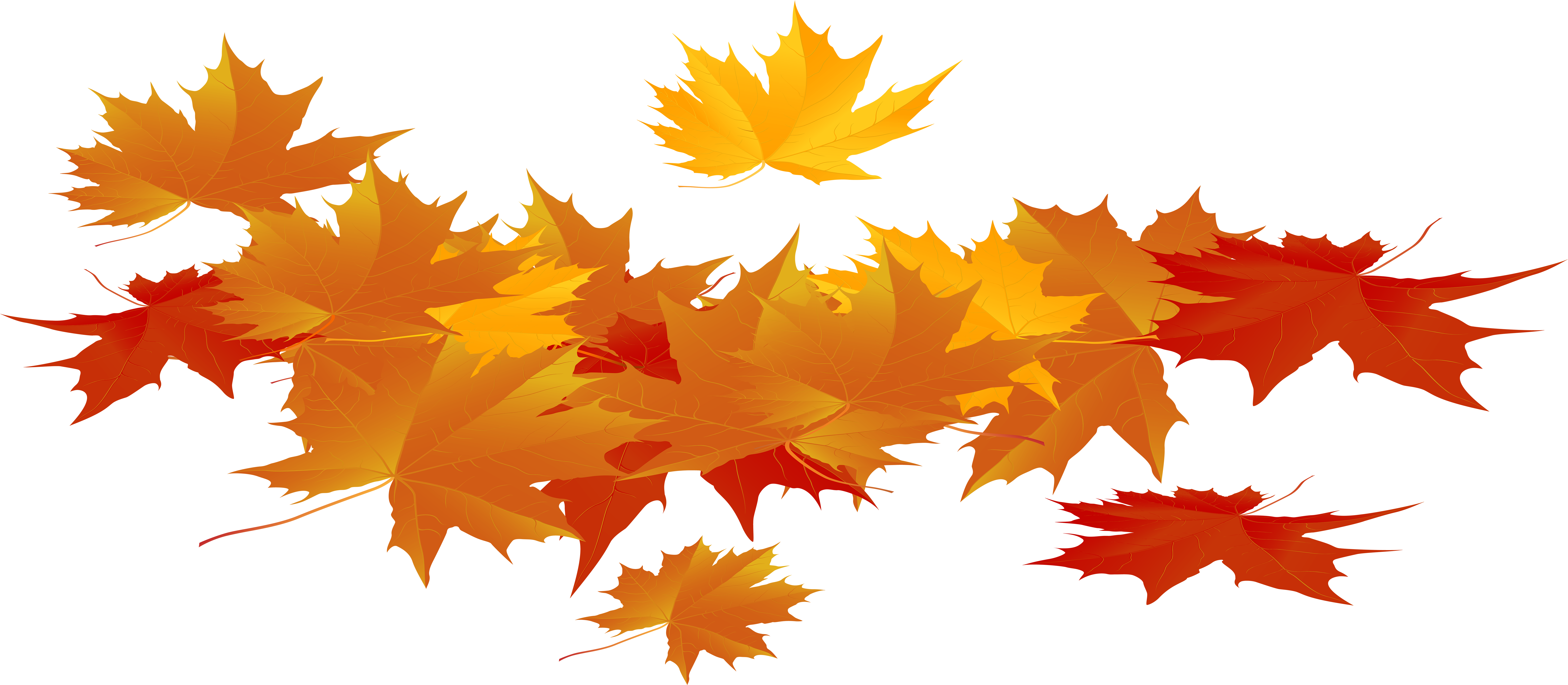 HD Thanksgiving Leaves Png.