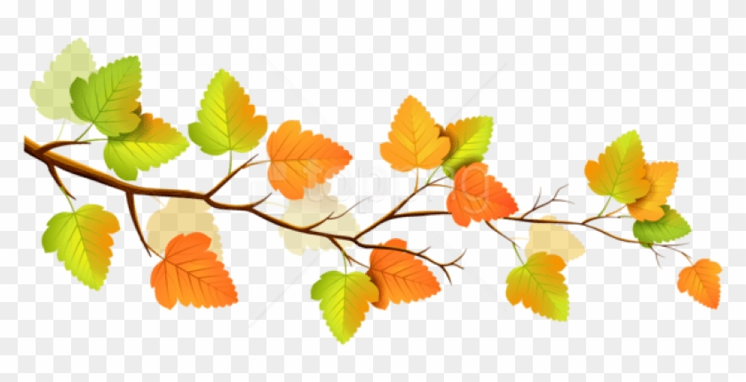 Free Png Download Autumn Png Images Background Png.