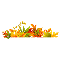 Download Autumn Free PNG photo images and clipart.
