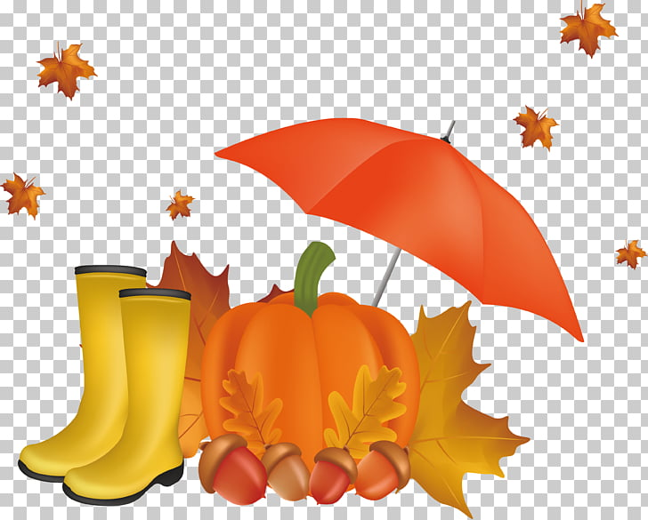Autumn , Beautiful autumn scenery PNG clipart.