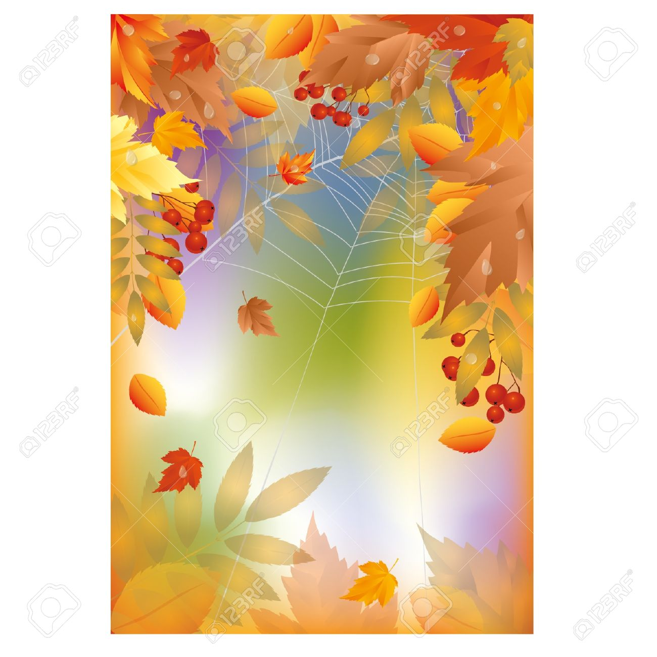 Autumn Banner With Spider Web, Illustration Royalty Free Cliparts.