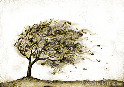 Storm tree clipart.