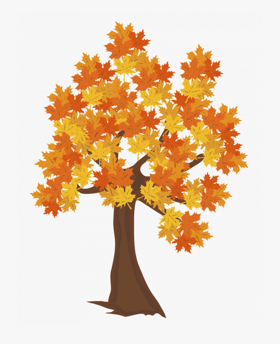 Drawing Fall Autumn Tree.