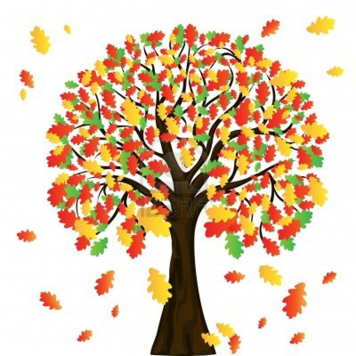 Autumn tree clipart free.