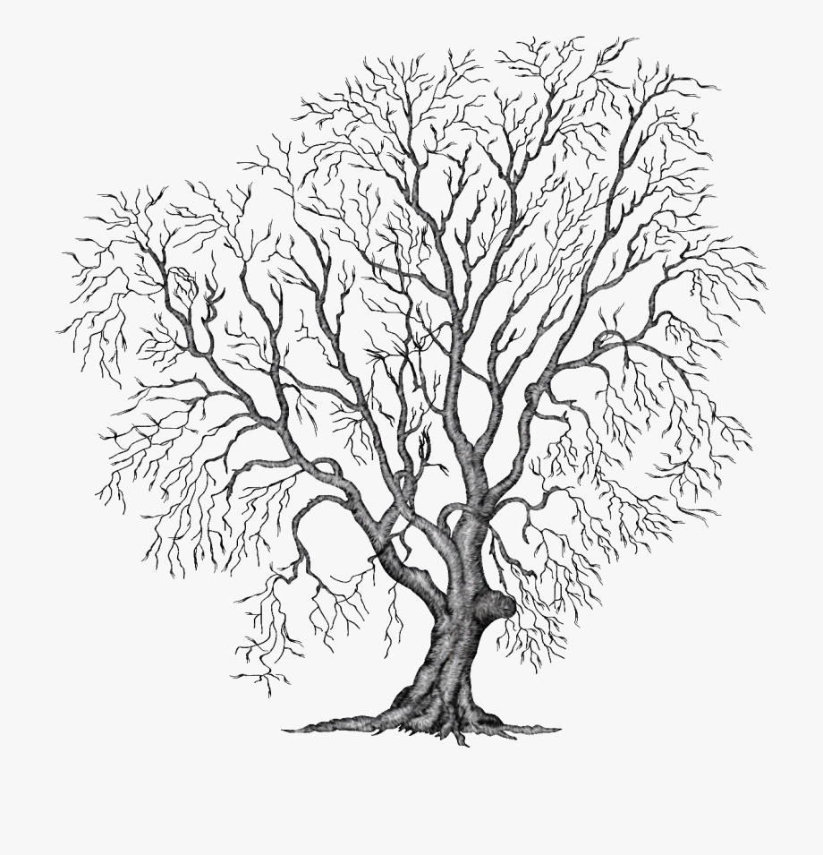 Painting Tree Clipart Illustration Png File Autumn.