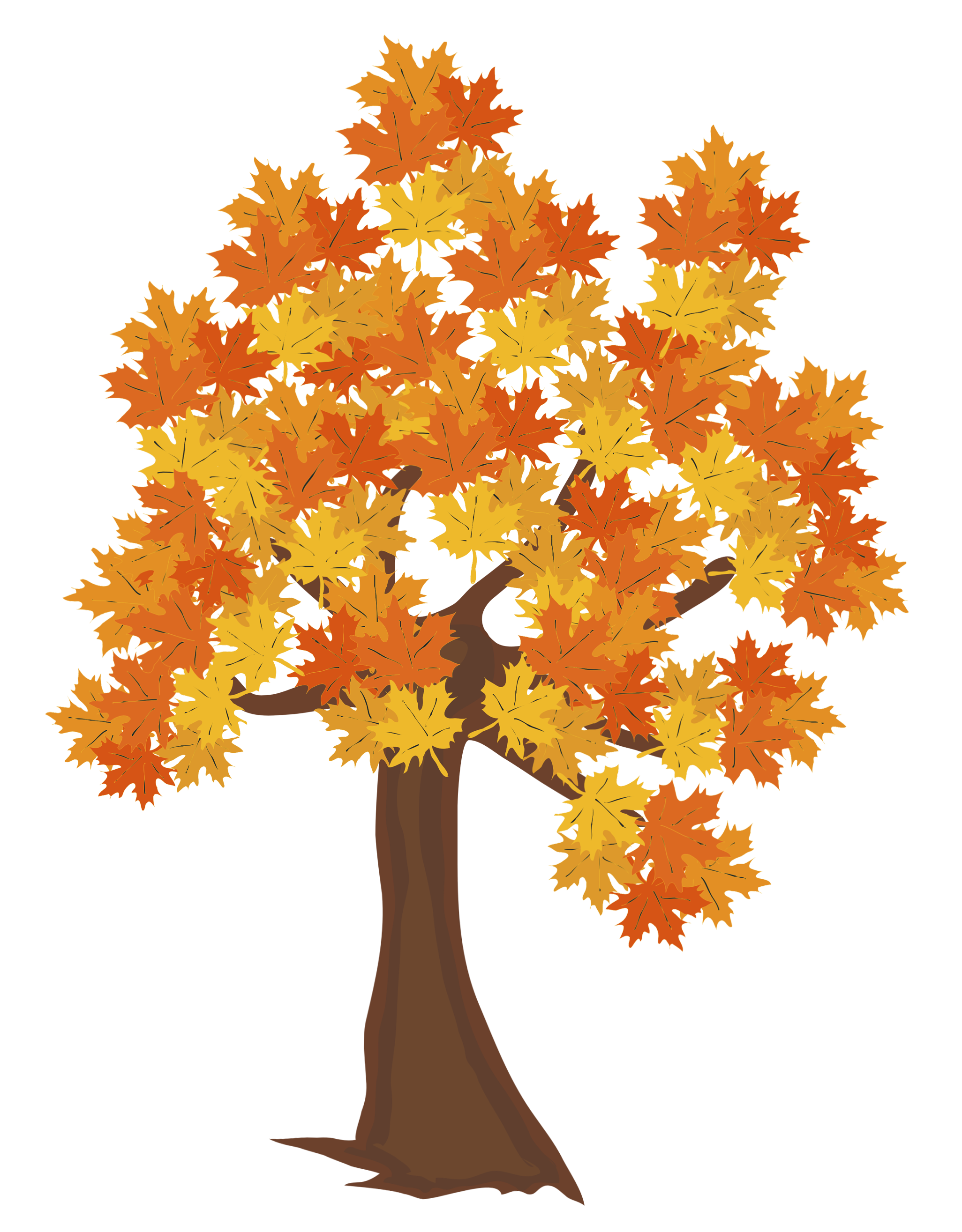 Fall Tree PNG Image.