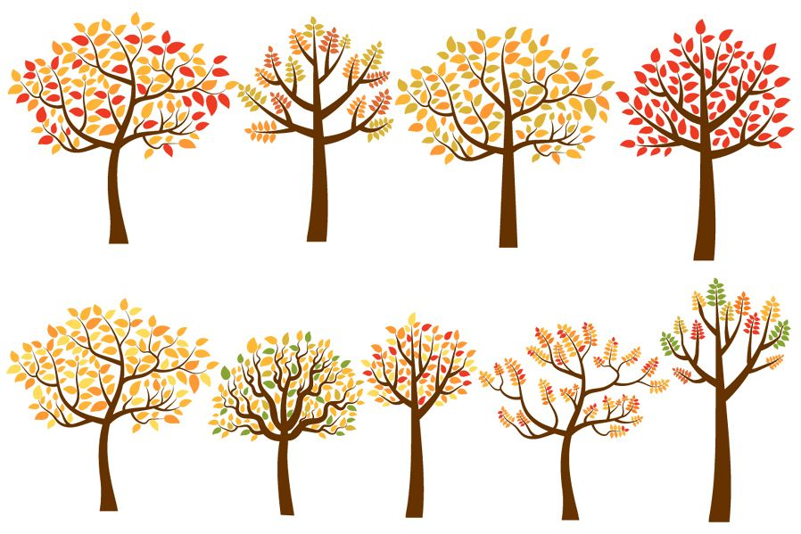 Yellow and red fall trees clip art set autumn tree clipart.