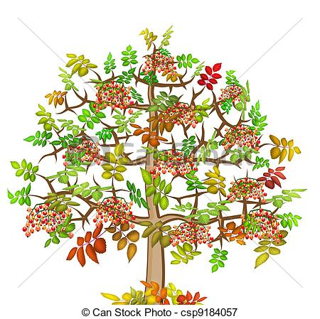 Stock Illustrations of ash lonely autumn tree.