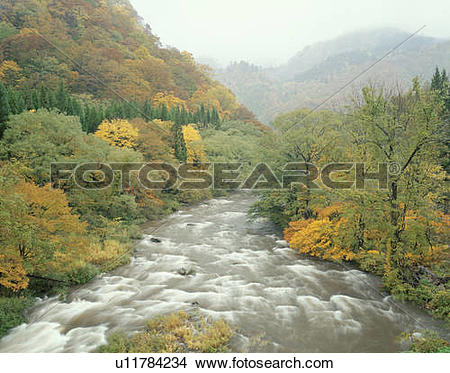 Stock Photo of Komata river in Autumn, Kita.