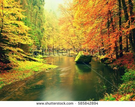 Landscape Oil Painting River Autumn Forest Stock Illustration.
