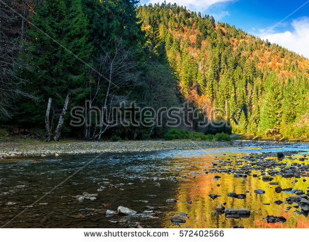 Landscape Mountains Forest River Front Beautiful Stock Photo.