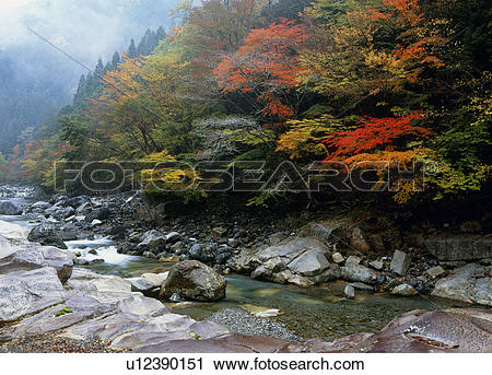 "Stock Photography of ""Autumn Leaves And River, Nara, Japan."