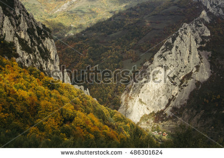 Aerial Autumn Forest Perspective Stock Photos, Royalty.