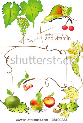 Autumn Menu With Fruits And Vitamins Stock Vector Illustration.