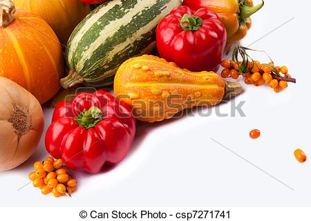 Stock Photography of autumn still.