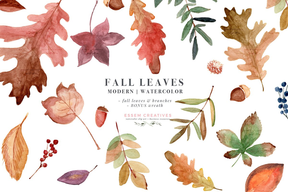 Fall Leaves Watercolor Leaf Clipart ~ Illustrations.