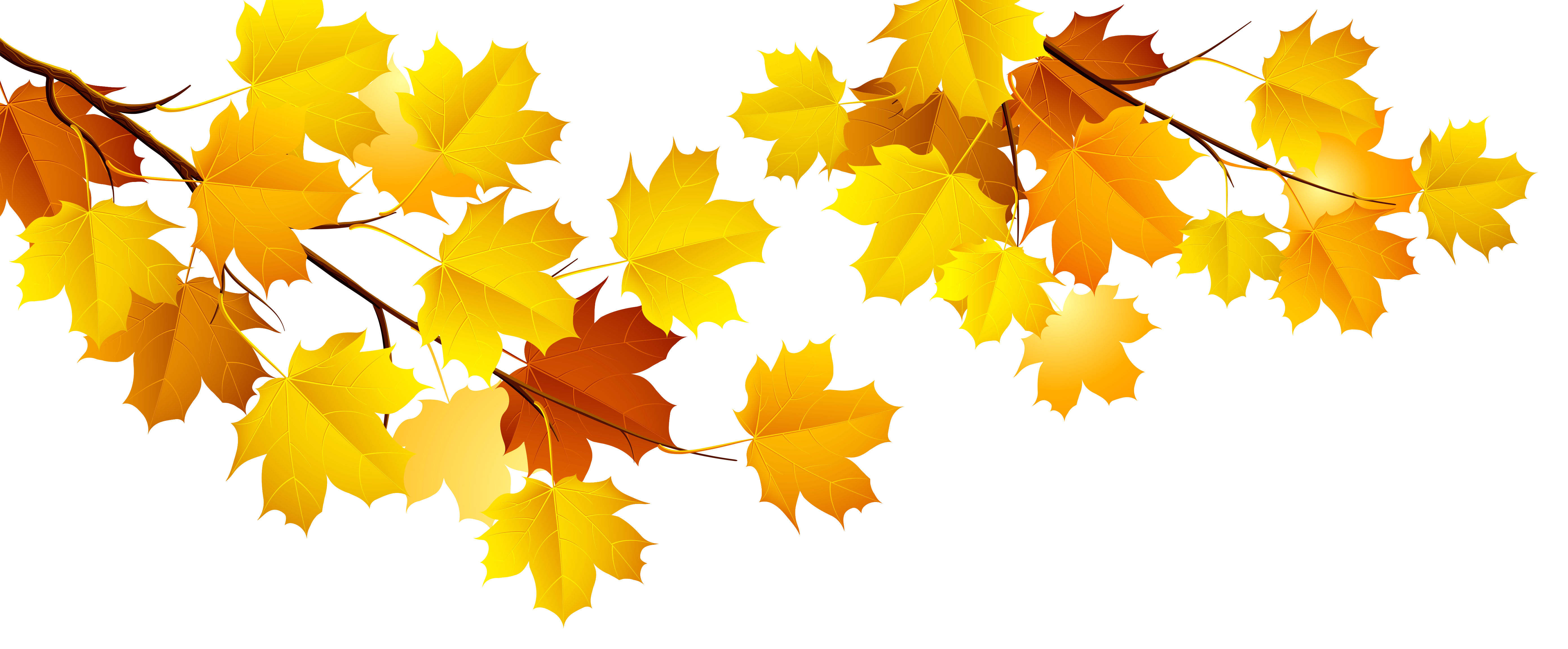 fall tree branch clipart png - Clipground