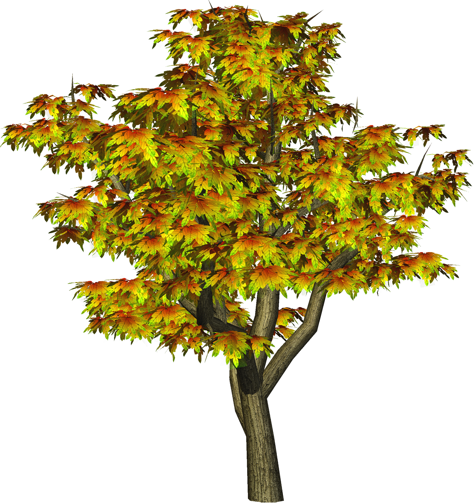 Autumn Tree PNG Tree Clipart.