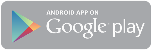 Google Play Download Icon #287384.