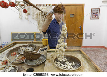 "Stock Photo of ""Raw silk and silk cocoons, Sentez carpet weavery."