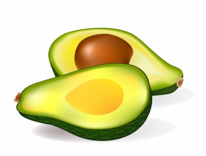 Free Avocado Cliparts, Download Free Clip Art, Free Clip Art.