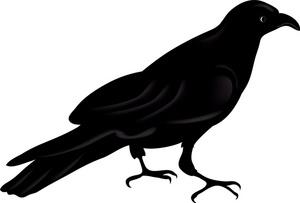 Ravens Clip Art Nfl.