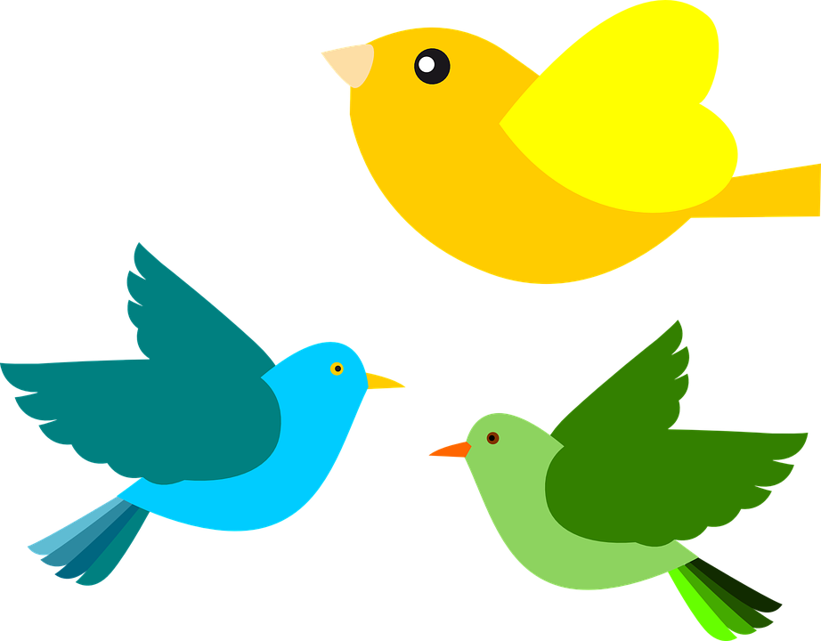 Free vector graphic: Aves, Birds, Flying, Colors.