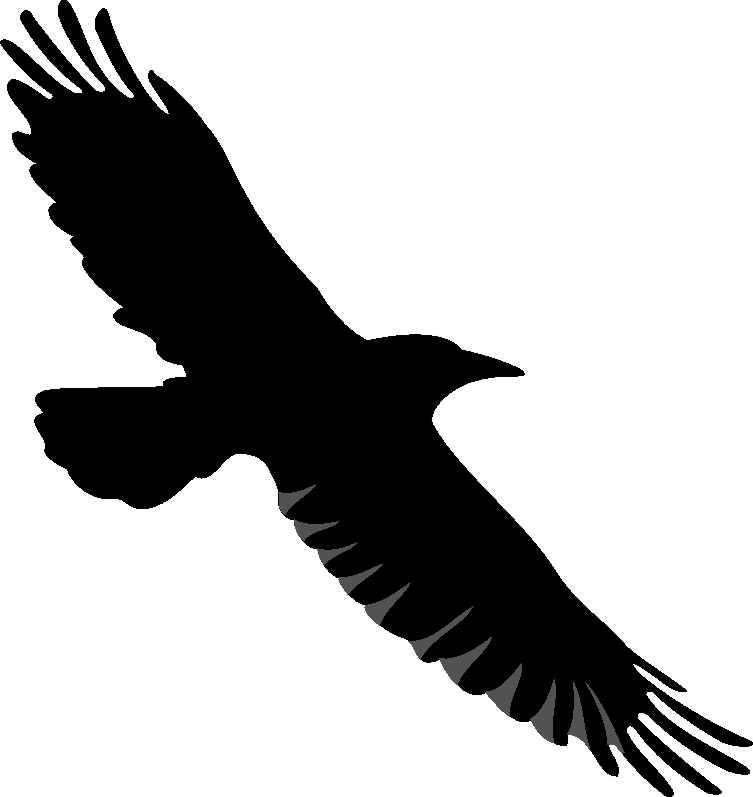 Descarga Imágenes De Aves Clipart De Grullas Cuervo.