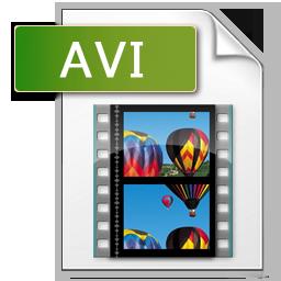Avi Icon #370163.