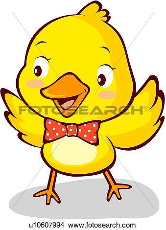 Drawings of bird, chick, avian, animal, vertebrate, pet u10607994.