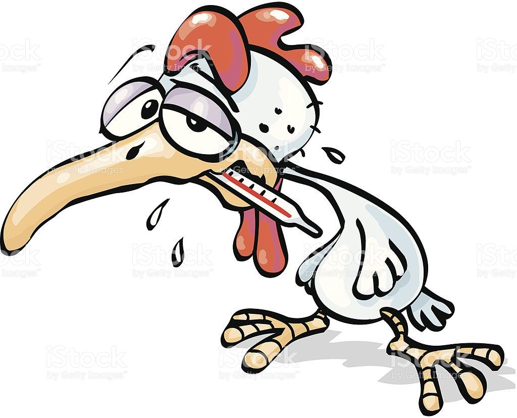 Bird Flu stock vector art 153240559.
