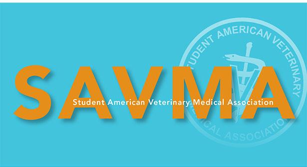 Preparing to Lead the Student AVMA.