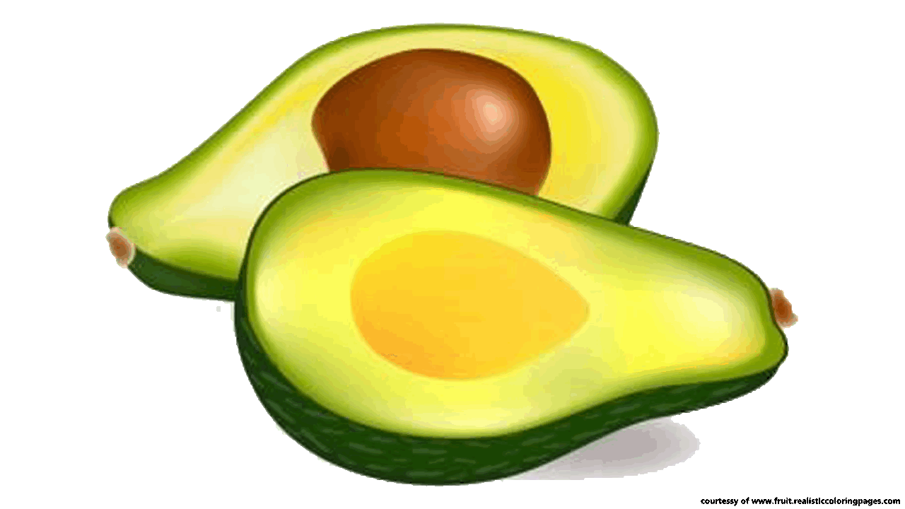 14 Great Avocado Fruit Clipart Free Download.