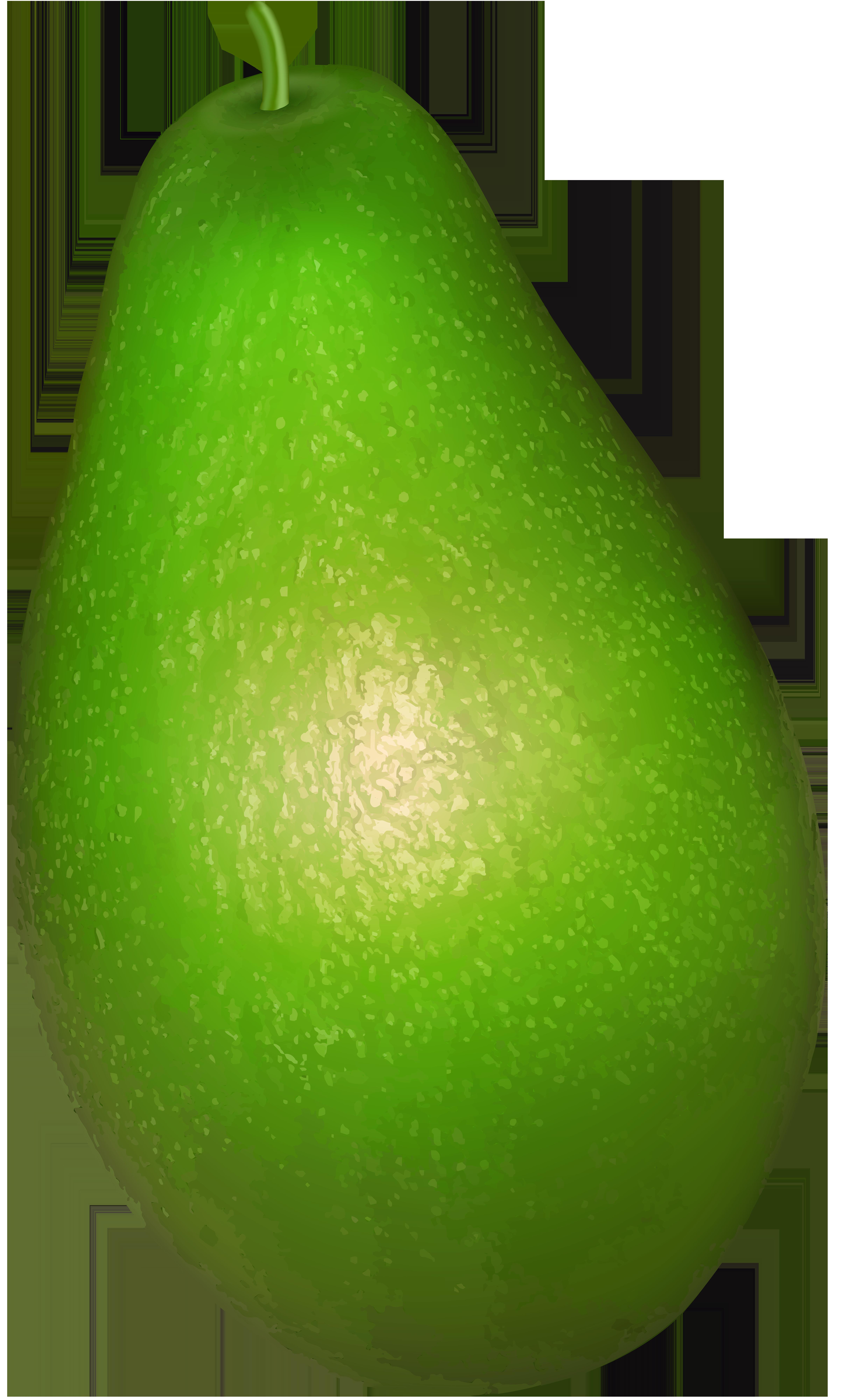 Avocado Transparent PNG Clip Art.