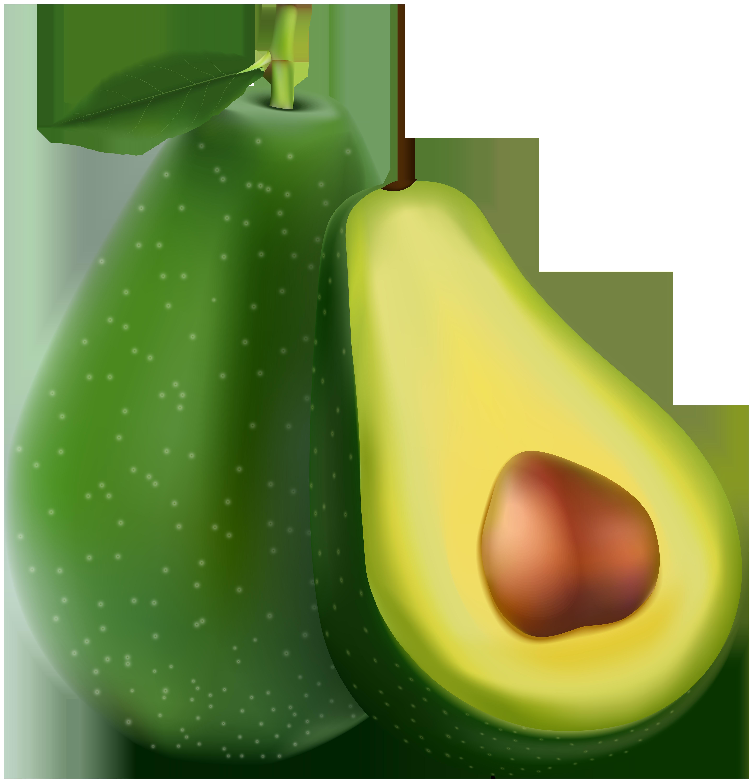 Avocado Transparent PNG Image.