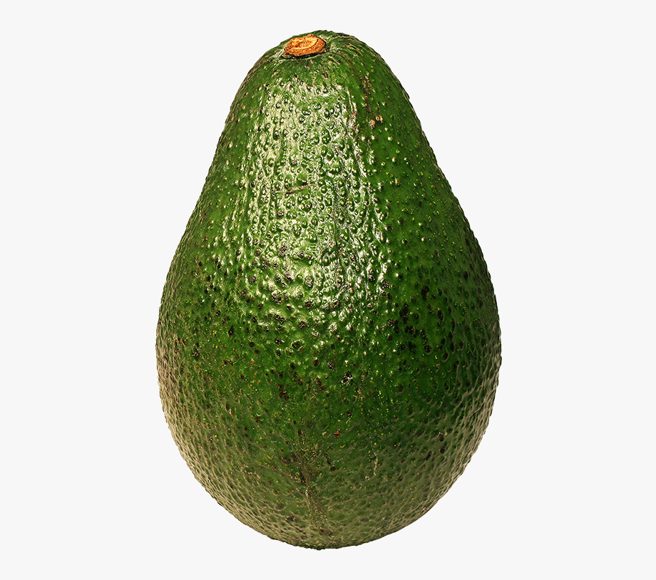 Avocado Png Transparent Images Free Download Clipart.