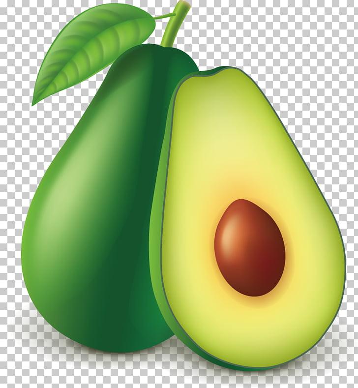 Avocado Guacamole Euclidean Fruit, Avocado PNG clipart.