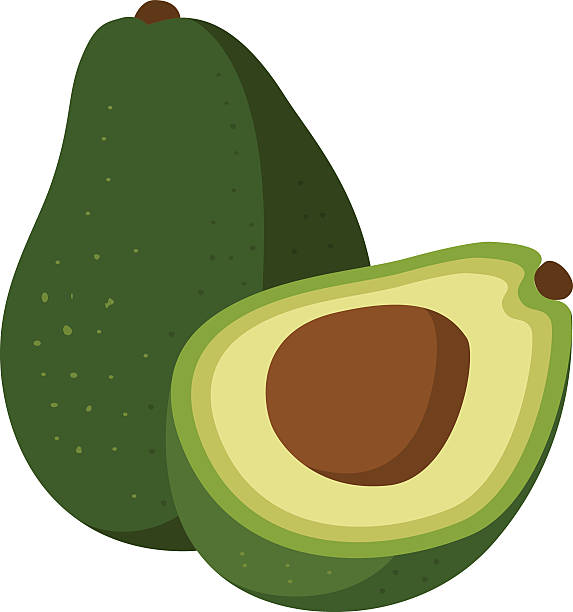 Avocado clipart 1 » Clipart Station.