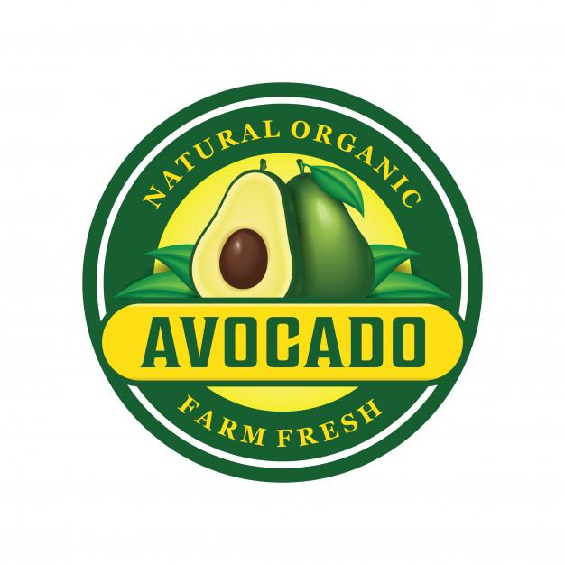 Avocado logo design Vector.