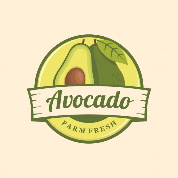 Avocado logo emblem Vector.