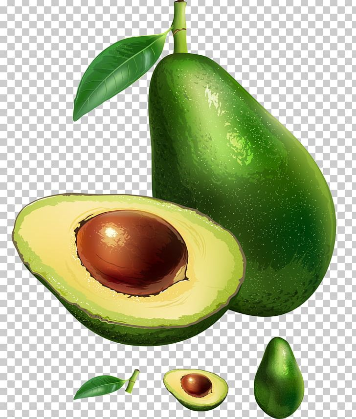 Avocado Stock Photography Illustration PNG, Clipart, Avocado.