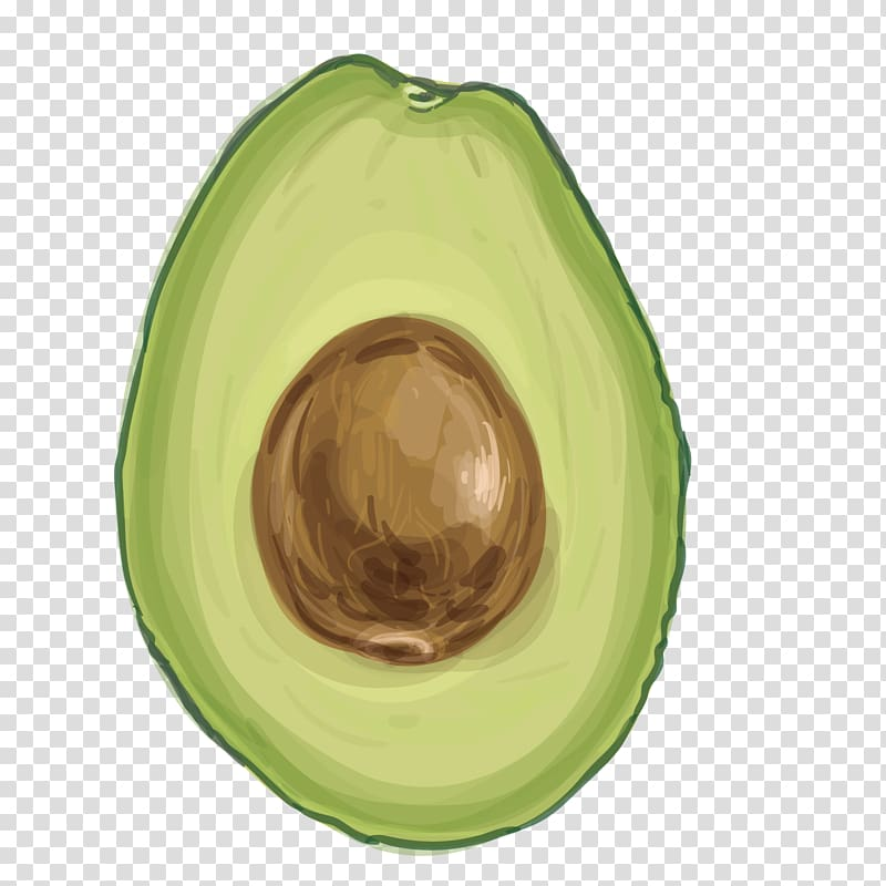 Food, avocado transparent background PNG clipart.
