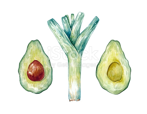 Set Of Hand Drawn Watercolor Green Leek Avocado Clipart stock.